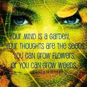 Grow flowers or weeds